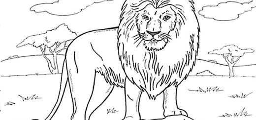 Ausmalbilder Löwe 23