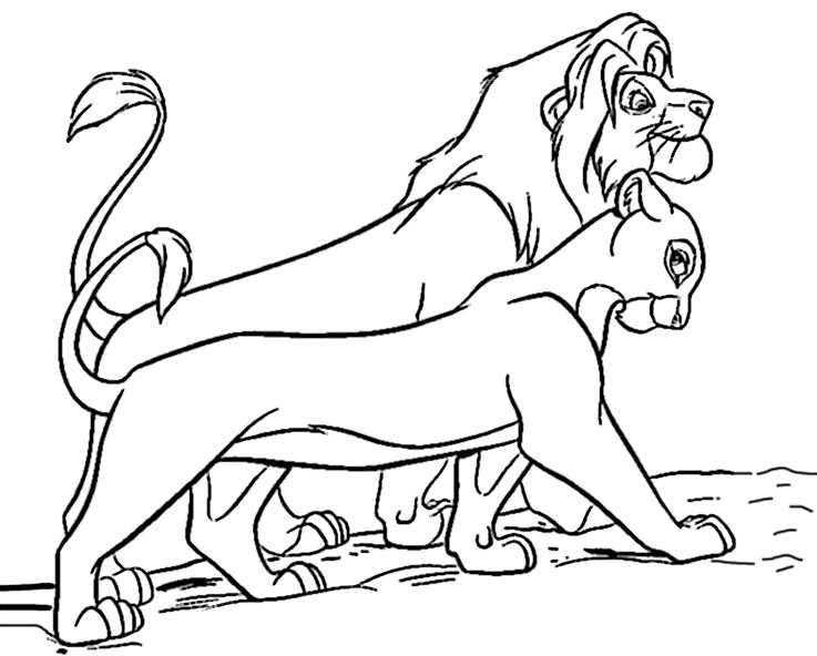 Ausmalbilder Löwe 24