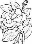Ausmalbilder Blumen 12