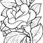 Blumen 12