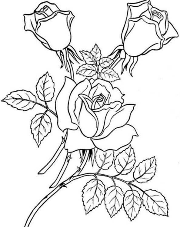 Ausmalbilder Blumen 14